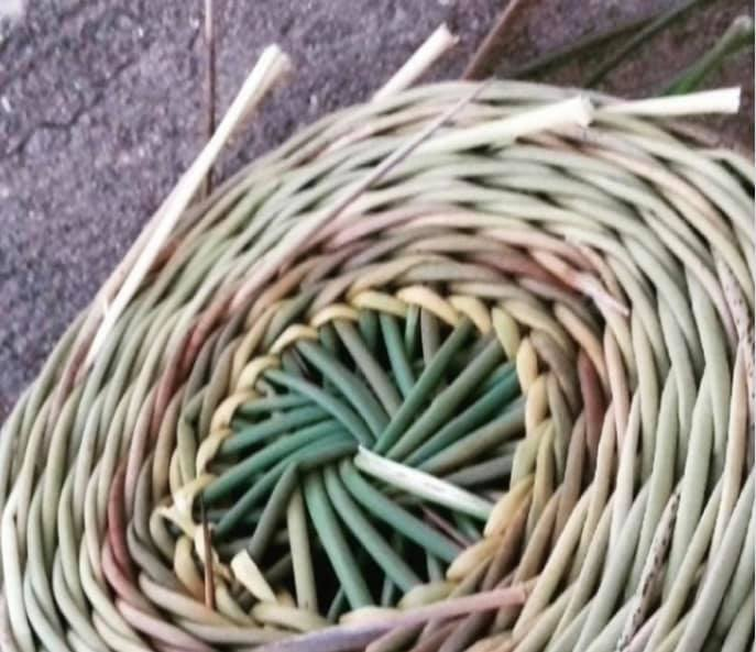 seminario pleksis tyrivolion terra lemnia limnos 2