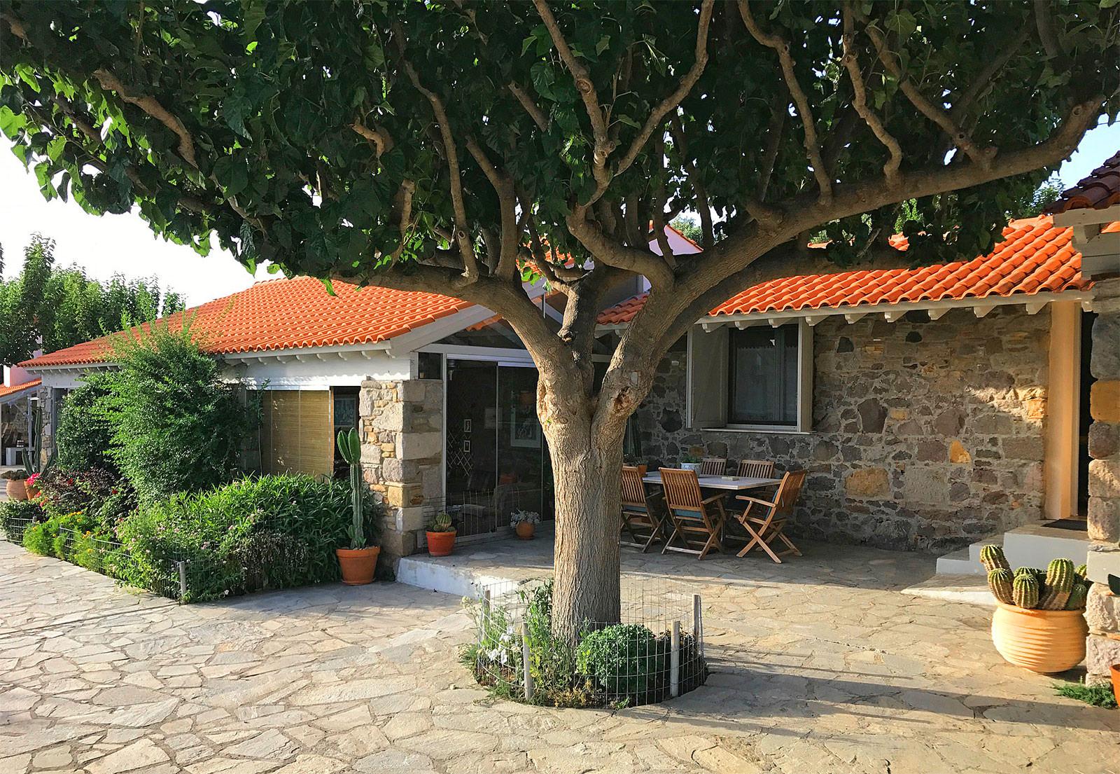 OLON Estate Lemnos 5